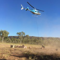 Lifting a load at the Bungles